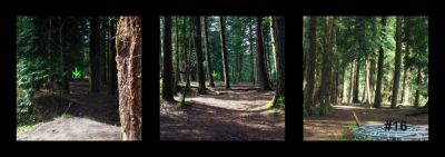 Dabney State Park, Main course, Hole 16