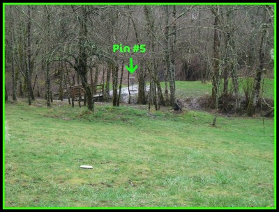 Dabney State Park, Main course, Hole 5 Midrange approach