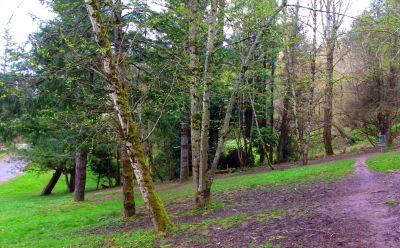 Dabney State Park, Main course, Hole 1