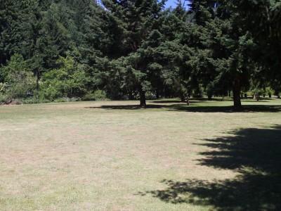 Trojan Park, Main course, Hole 4 Tee pad