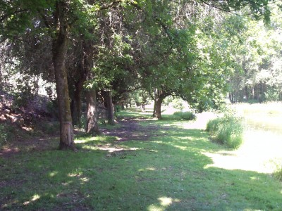 Trojan Park, Main course, Hole 11 Tee pad