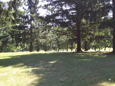 Trojan Park, Main course, Hole 3 Tee pad