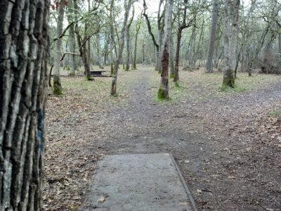 Riverfront Park, Main course, Hole 14 Tee pad