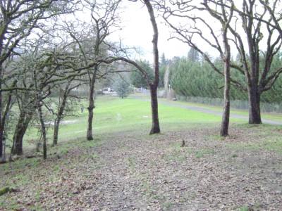 Riverfront Park, Main course, Hole 17 Midrange approach