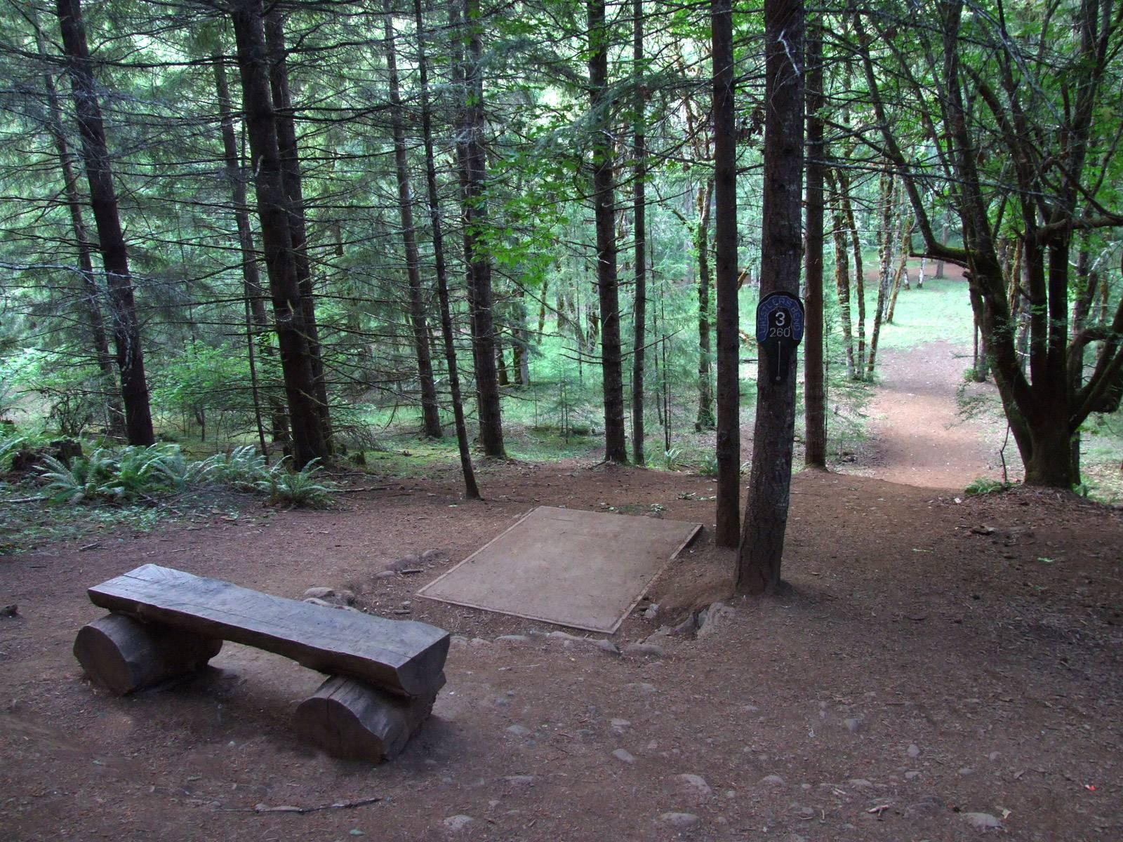 Hole 3 Whistler S Bend Roseburg Or Disc Golf