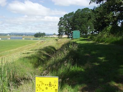 Corban College, Main course, Hole 8 Tee pad