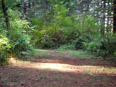 Camp Dakota, Main course, Hole 12 Tee pad