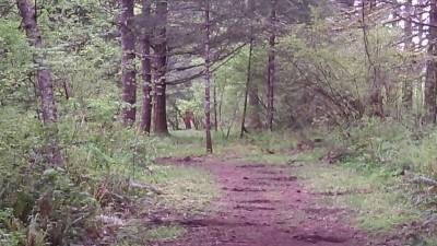Camp Dakota, Main course, Hole 12 Long approach