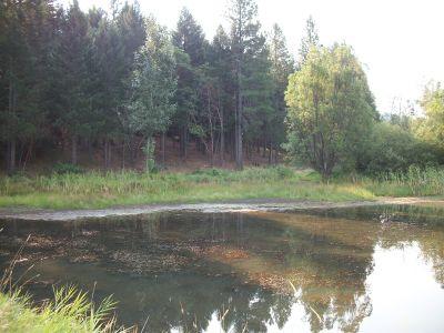 Lake Selmac, Main course, Hole 9 Tee pad