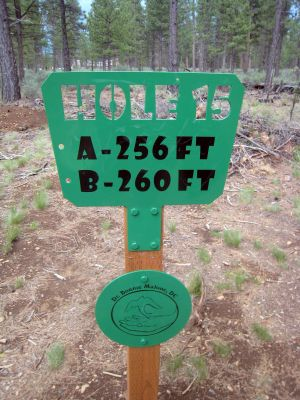 Hyzer Pines at S.O.A.R., Main course, Hole 15 Hole sign