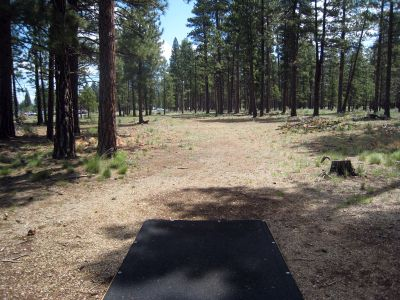Hyzer Pines at S.O.A.R., Main course, Hole 1 Tee pad
