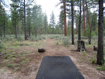 Hyzer Pines at S.O.A.R., Main course, Hole 12 Tee pad