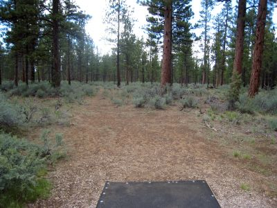 Hyzer Pines at S.O.A.R., Main course, Hole 10 Tee pad