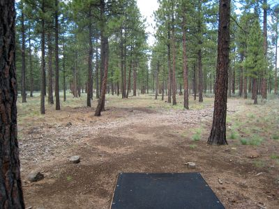 Hyzer Pines at S.O.A.R., Main course, Hole 4 Tee pad