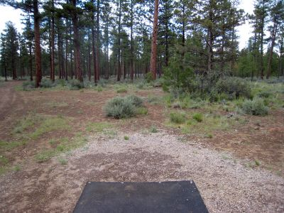 Hyzer Pines at S.O.A.R., Main course, Hole 13 Tee pad