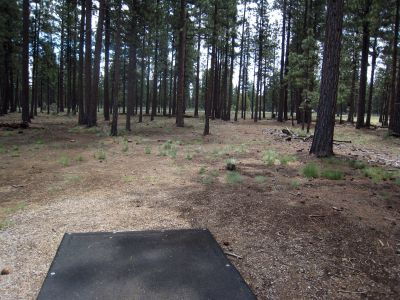 Hyzer Pines at S.O.A.R., Main course, Hole 2 Tee pad