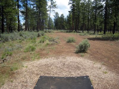 Hyzer Pines at S.O.A.R., Main course, Hole 9 Tee pad