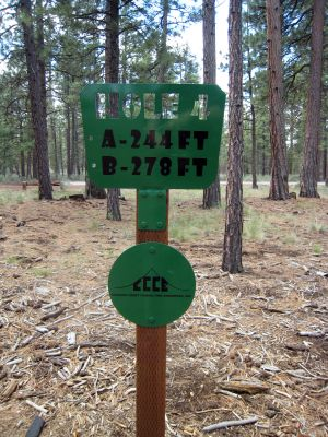 Hyzer Pines at S.O.A.R., Main course, Hole 4 Hole sign