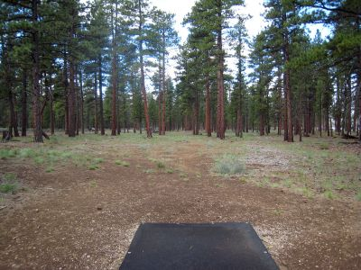 Hyzer Pines at S.O.A.R., Main course, Hole 3 Tee pad