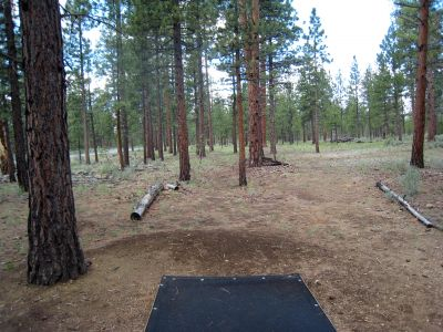 Hyzer Pines at S.O.A.R., Main course, Hole 5 Tee pad