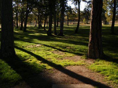 Tree Top DGC at Sorosis Park, Main course, Hole 3 Tee pad