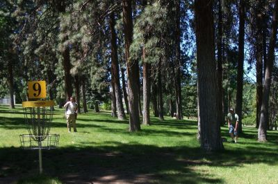 Tree Top DGC at Sorosis Park, Main course, Hole 9 Reverse (back up the fairway)