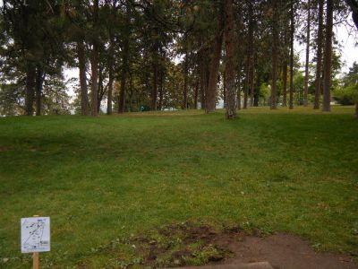 Tree Top DGC at Sorosis Park, Main course, Hole 7 Tee pad