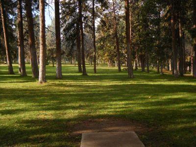Tree Top DGC at Sorosis Park, Main course, Hole 9 Tee pad