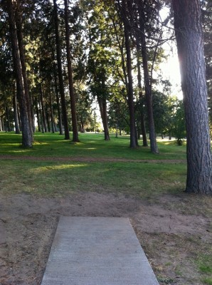 Tree Top DGC at Sorosis Park, Main course, Hole 10 Tee pad