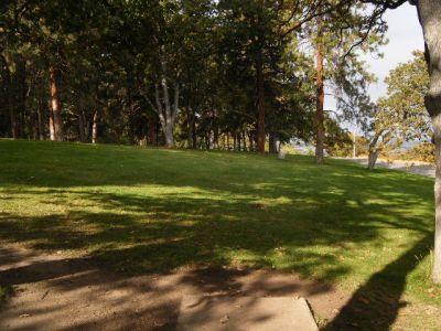 Tree Top DGC at Sorosis Park, Main course, Hole 8 Tee pad
