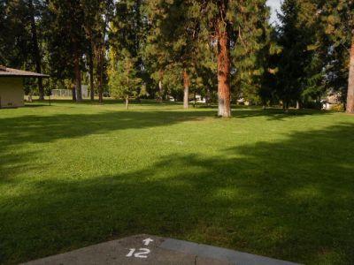 Tree Top DGC at Sorosis Park, Main course, Hole 12 Tee pad