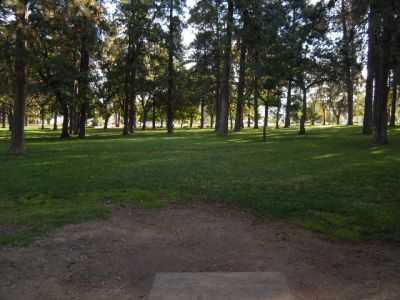 Tree Top DGC at Sorosis Park, Main course, Hole 5 Tee pad