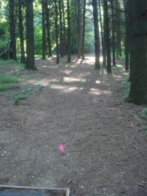 Roland Park, Main course, Hole 14 Short tee pad