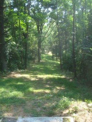 Roland Park, Main course, Hole 19 Long tee pad