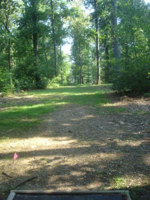 Roland Park, Main course, Hole 15 Short tee pad