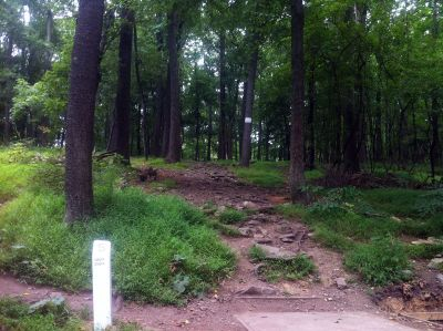 South Mountain Park, Main course, Hole 5 Tee pad