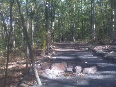 French Creek State Park, Pleasure Mountain, Hole 11 Tee pad