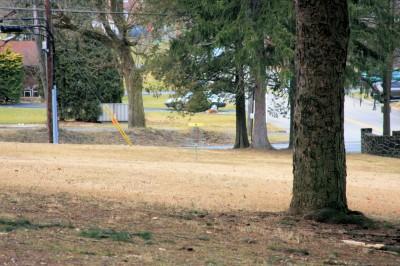 Hacketts Park, Main course, Hole 8