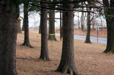Hacketts Park, Main course, Hole 9