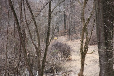 Hacketts Park, Main course, Hole 17