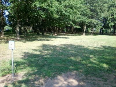 Branchwood Park, Main course, Hole 5 Tee pad