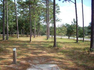 University of South Alabama, Main course, Hole 10 Tee pad