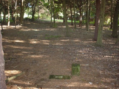 Codorus State Park, Pines Mini, Hole 2 Long tee pad