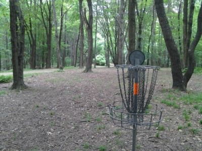 IUP College Lodge, Main course, Hole 13 Reverse (back up the fairway)