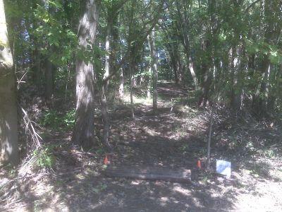 Anson B. Nixon Park, Main course, Hole 6 Long tee pad