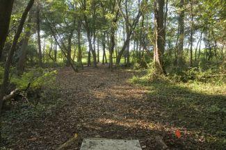 Anson B. Nixon Park, Main course, Hole 9 Short tee pad