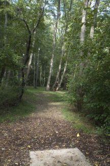 Anson B. Nixon Park, Main course, Hole 4 Short tee pad