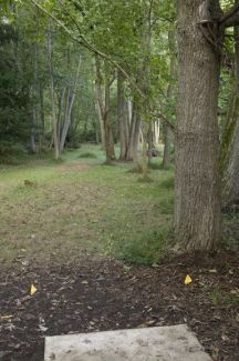 Anson B. Nixon Park, Main course, Hole 3 Short tee pad