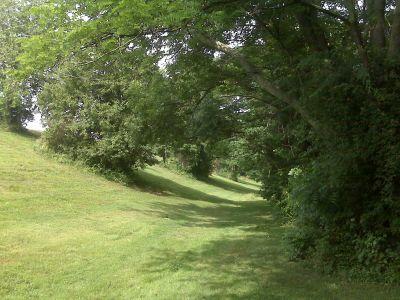 Anson B. Nixon Park, Main course, Hole 13a Tee pad