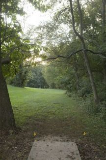 Anson B. Nixon Park, Main course, Hole 14 Short tee pad